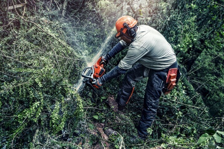 Storm-cleanup with chainsaws – How to stay safe when nature strikes