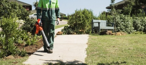 5 ways for using your leaf blower like a pro